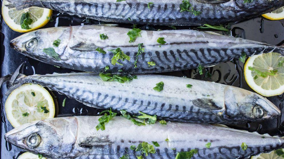 ¿Cuánto pescado azul debes comer para proteger tu corazón?