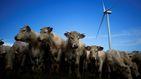 Los Riberas (Gestamp y Gonvarri) preparan una avalancha de nuevas renovables