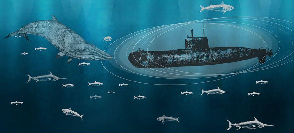 Foto: La supercavitación marina podría ser una invitación al desastre
