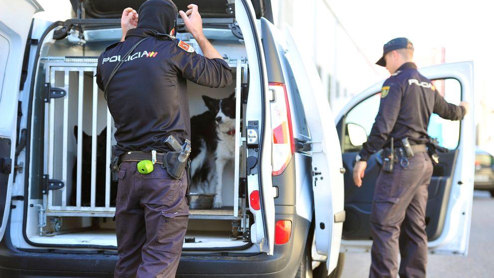 Despliegue policial en Parla, Móstoles y Fuenlabrada contra empresas chinas
