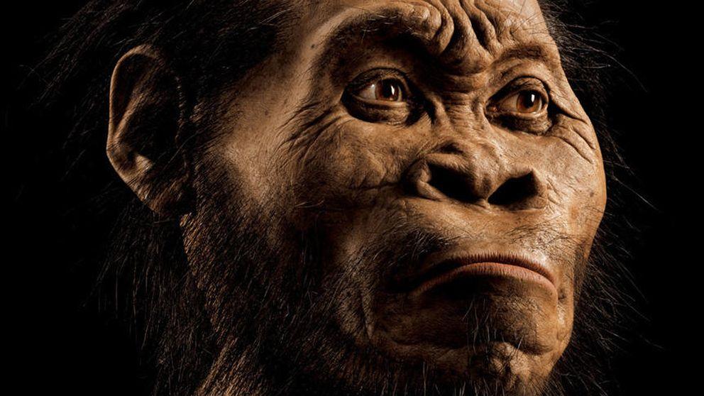 Preguntas sin respuesta que deja 'Homo naledi' sobre el origen de la humanidad