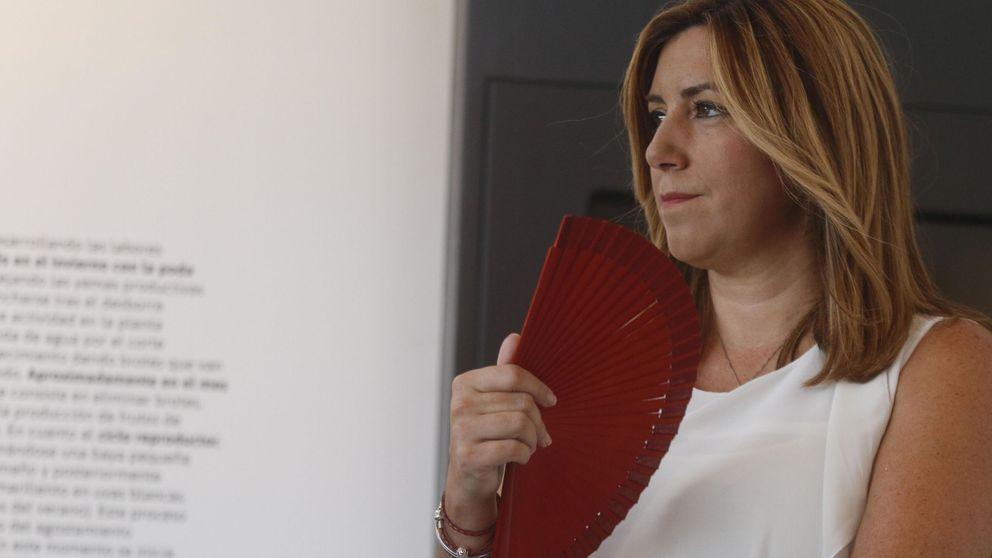 """Susana Díaz se postula ante el desafío de Sánchez: """"Estaré donde diga el partido"""""""