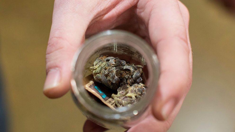 Super Bowl: rechazan emitir un anuncio sobre los beneficios de la marihuana