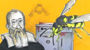 Galileo, la avispa, el cocinero y las clases medias que quieren ser ricas