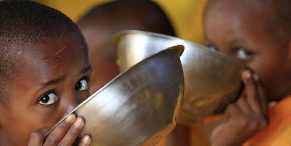 Foto: Yo también creo que las ONGs se quedan con el dinero que recaudan