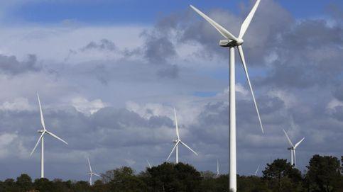 General Electric y BlackRock, los gigantes detrás del golpe de mano de Forestalia