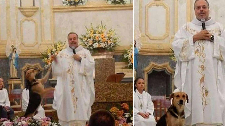 La historia de Joao Paulo, el sacerdote que lleva perros a misa para que sean adoptados