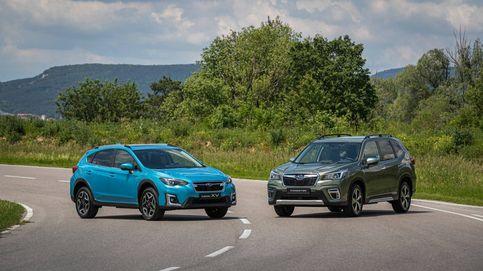 El todocamino que Subaru solo te venderá en versión híbrida, el Forester