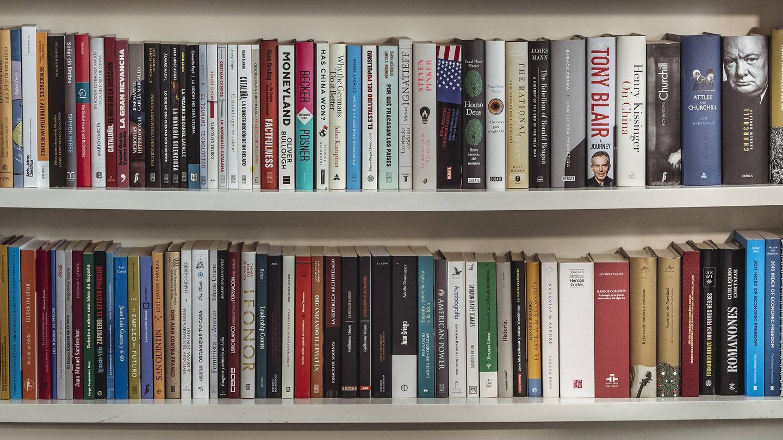 La estantería de Pablo Casado. (Daniel González)