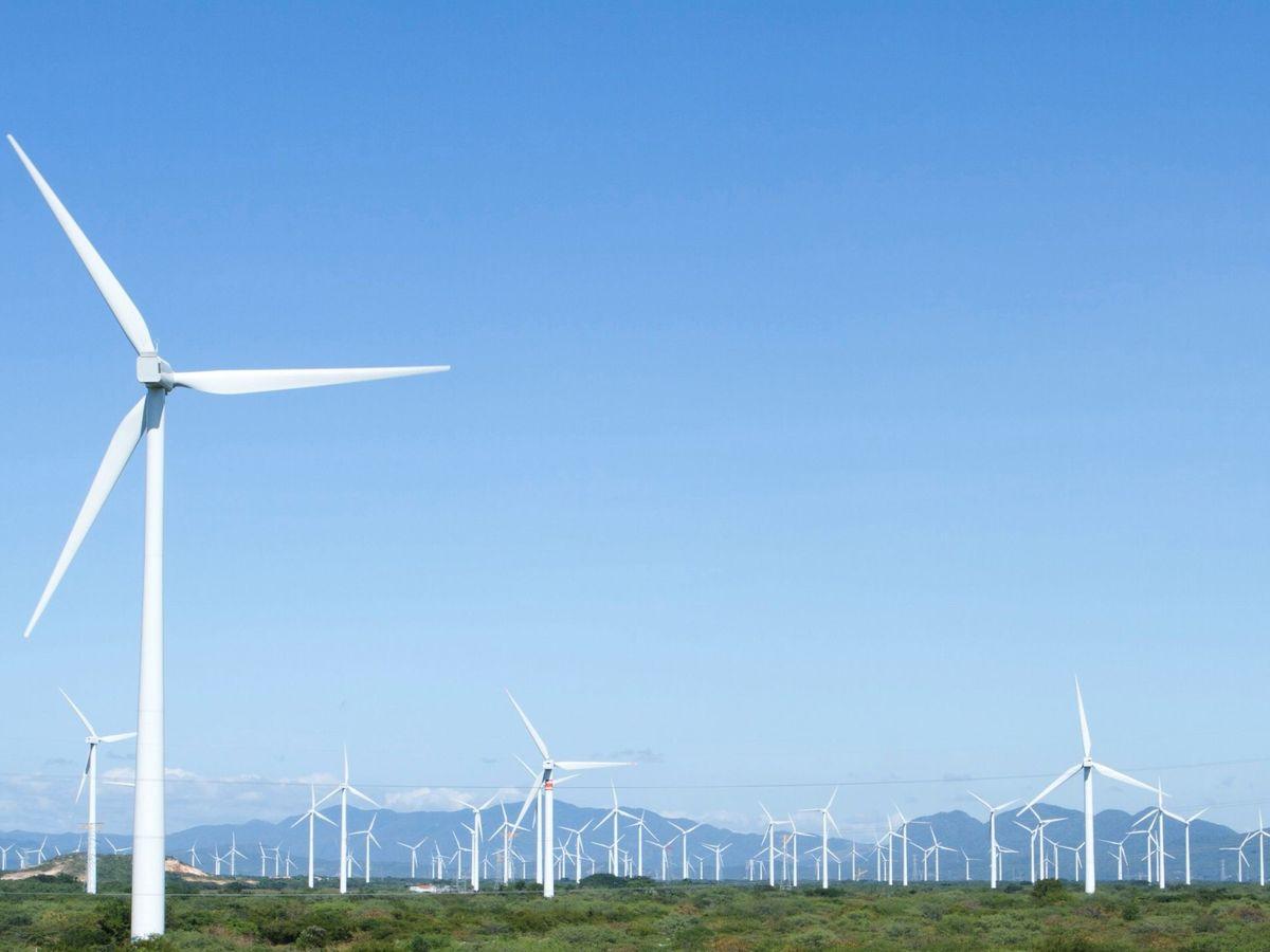 Foto: La mayor planta eléctrica del mundo será más grande que Sidney. (EFE)