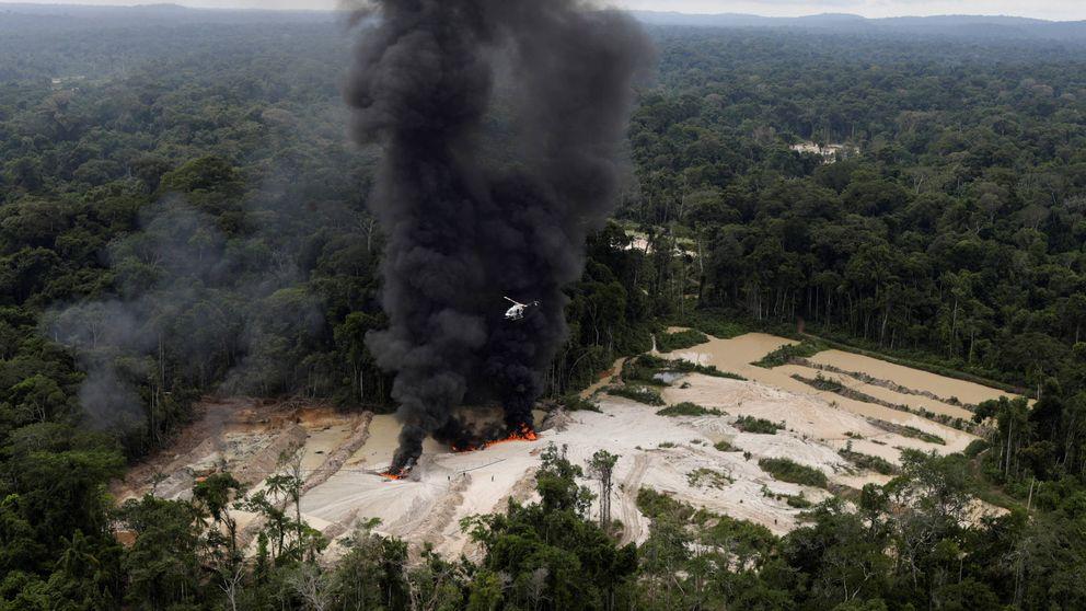 El monstruo del agronegocio despierta: la Amazonia, antes y después de Bolsonaro