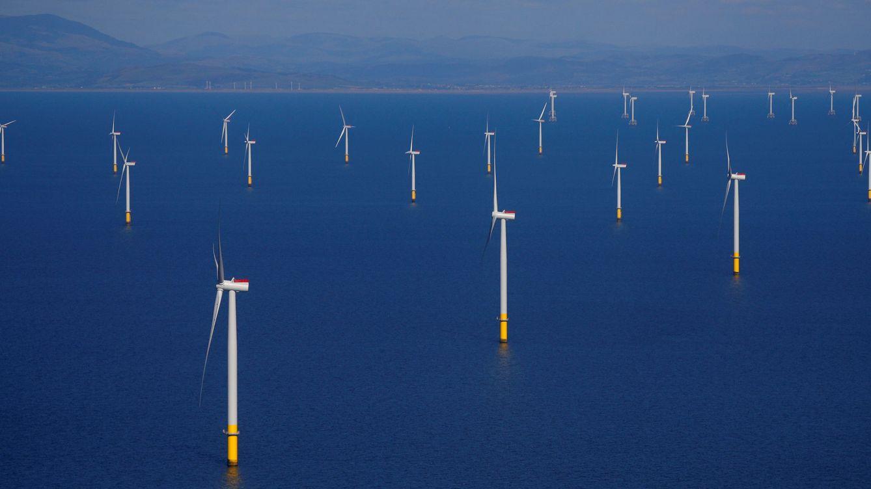 Foto: Imagen de un parque éolico marino (Reuters)
