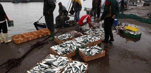 Post de La justicia de la UE puede anular el acuerdo pesquero con Marruecos por el Sáhara