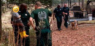 Post de Un 'héroe' de cuatro patas: protege a un niño de 3 años perdido en el bosque