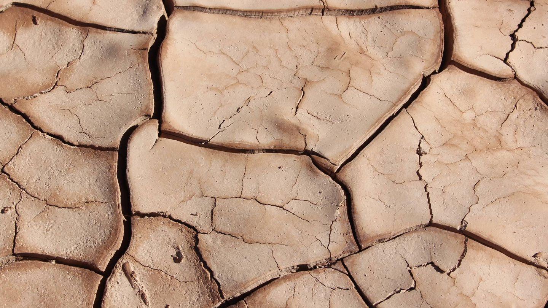 La piel seca tiende a ser áspera y las arrugas se ven más pronunciadas en ella. (Unsplash)