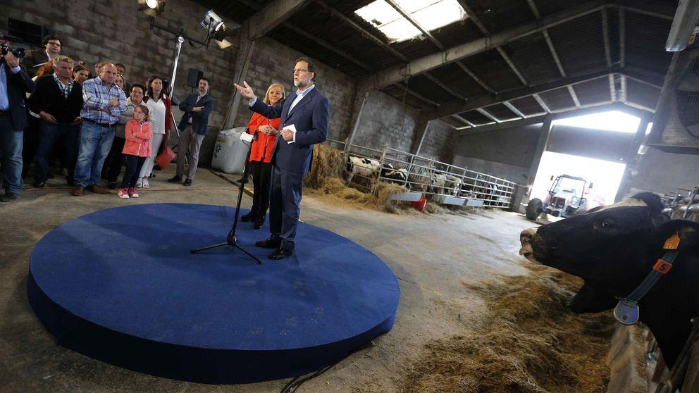 Resultados elecciones Asturias: PP-Foro se mantiene firme con 3 escaños