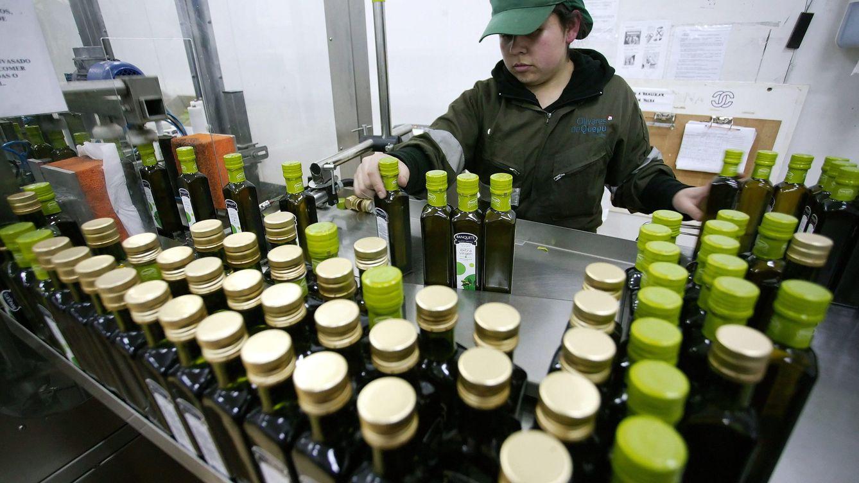 Los aceiteros, contra Agricultura: el vidrio es menos sostenible que el plástico