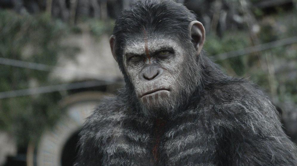 Foto: Imagen de 'El amanecer del planeta de los simios'. (20th Century Fox)