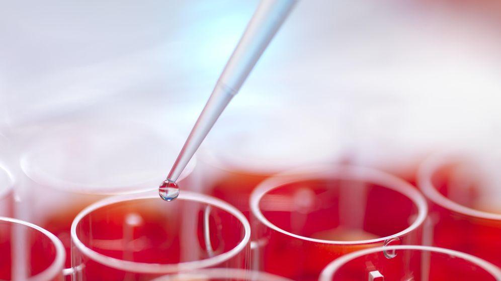 Foto: Han descubierto cuál es la razón de que las células no se rompan. (Corbis)