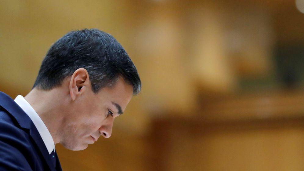 Foto: El presidente del Gobierno, Pedro Sánchez, en el Senado. (EFE)