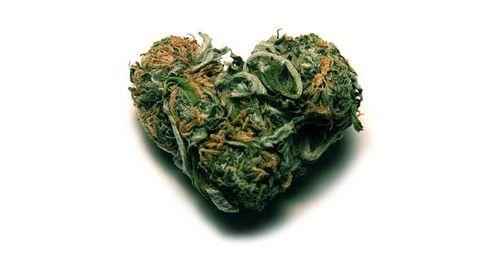 La marihuana no es solo para fumar: cuatro usos muy útiles