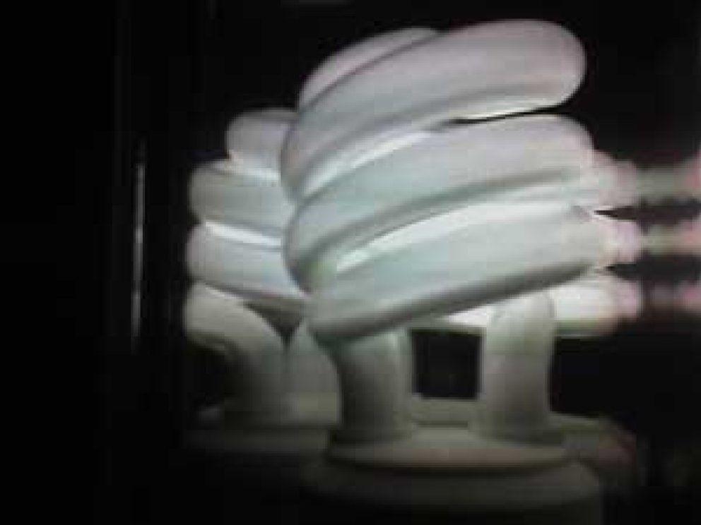 Foto: Las bombillas de bajo consumo atraen más a los insectos voladores