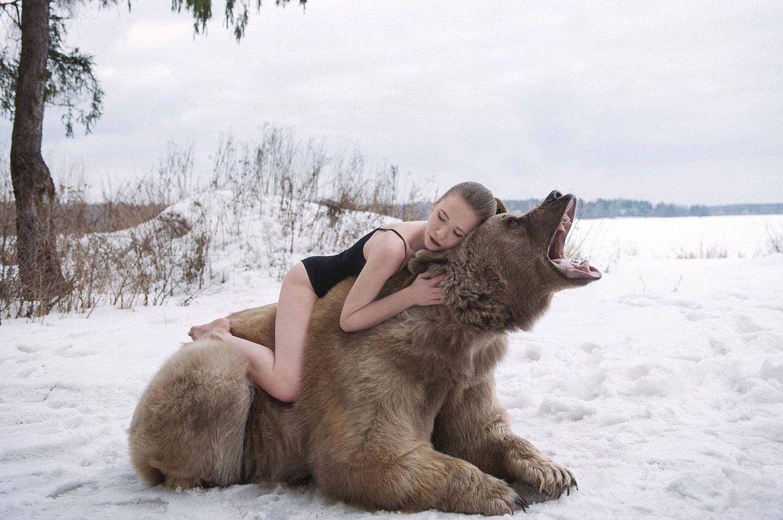 Resultado de imagen para Stepan oso modelo