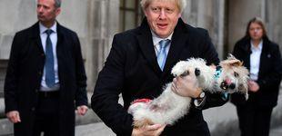 Post de Del perro de Boris a Alan Moore pidiendo el voto laborista: las anécdotas que deja el día