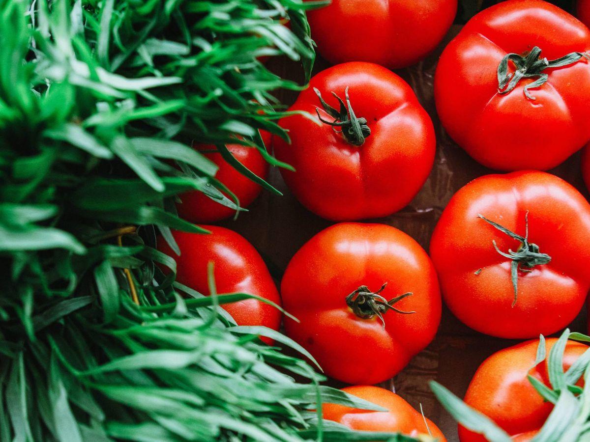 Foto: El licopeno es un potente antioxidante y el pigmento que da el característico color rojo a los tomates (Pexels)