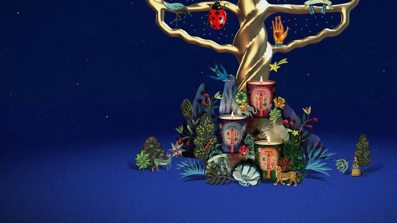 Aromas para el hogar: la mejor forma de perfumar esta Navidad