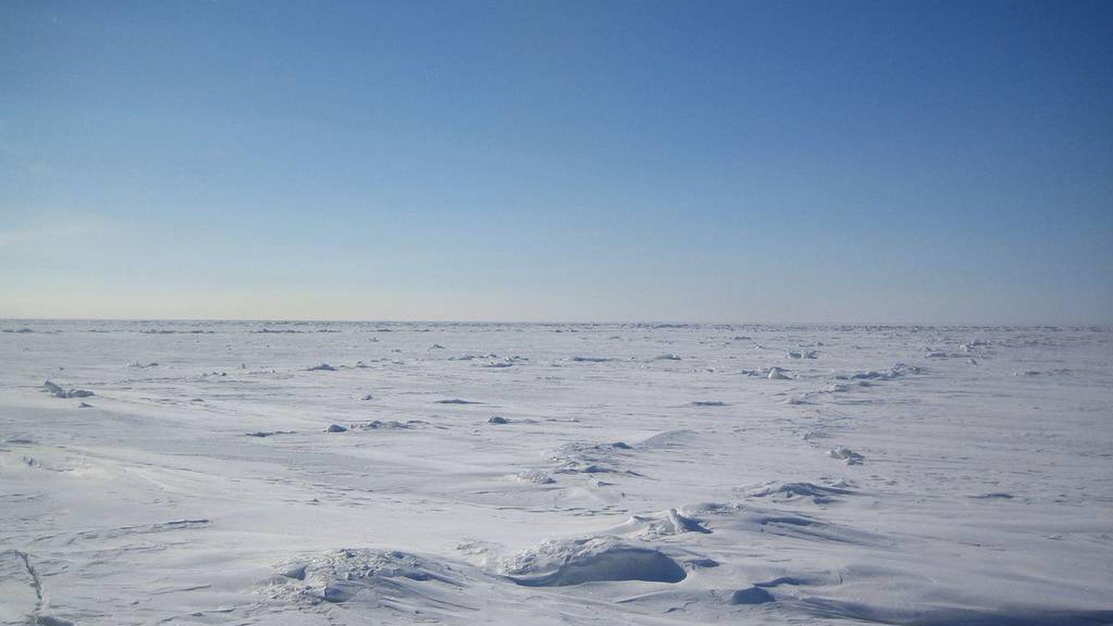 Foto: Encuentran genes de las superbacterias resistentes a los antibióticos en el Ártico. (CC/ArcticRoute)