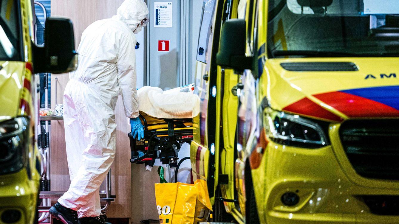 Filosofía holandesa ante el Covid-19: Llevar a los ancianos a morir al hospital es inhumano