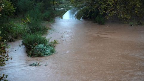 Europa, más proclive a inundaciones en sus ríos a causa del calentamiento global