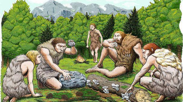 Foto: Cinco neandertales de El Sidrón degustan setas, piñones y musgo. / Abel Grau (CSIC)