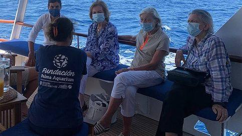 Lo que hizo la reina Sofía en su última salida en barco, contado por testigos