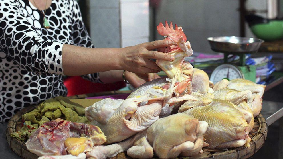 China detecta trazas de coronavirus en una muestra de alitas de pollo de Brasil