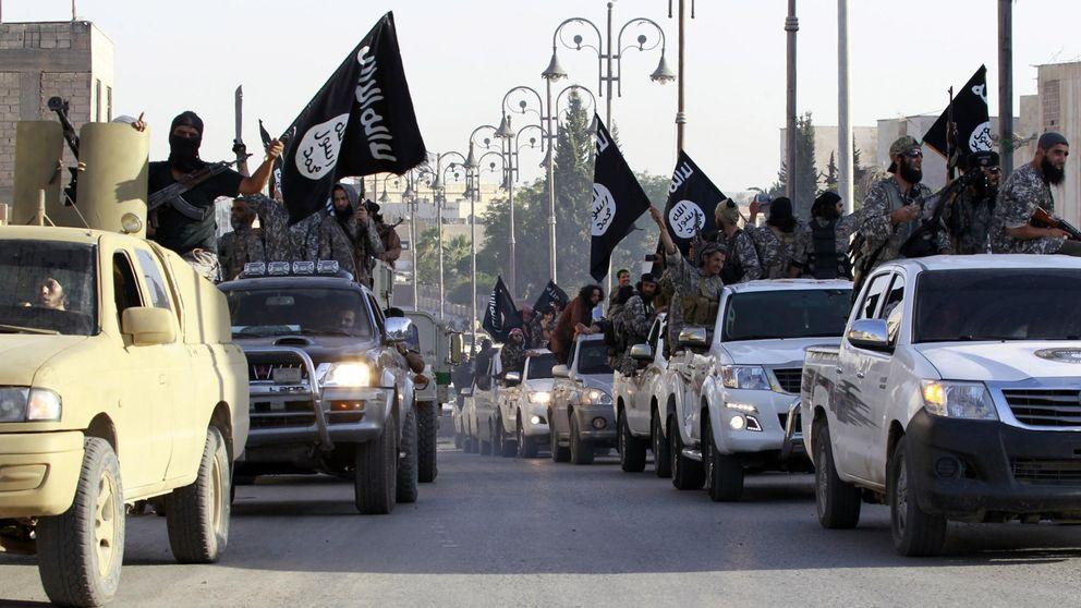 Algodón 'made in ISIS': el Estado Islámico se abre camino en el sector textil