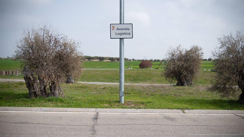 Vista de la avenida Logística, arteria principal del parque de Illescas. (Carmen Castellón)