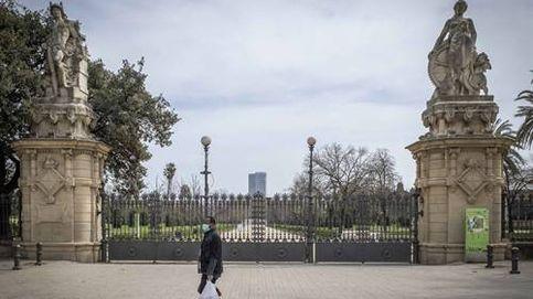 Muere un hombre en Barcelona tras caerle una palmera del parque de la Ciudadella