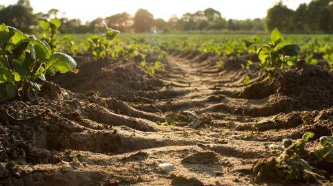 Bruselas pide ideas a los ciudadanos para proteger la calidad de la tierra