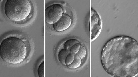 El científico chino de los bebés modificados los creó a espaldas de su propia universidad