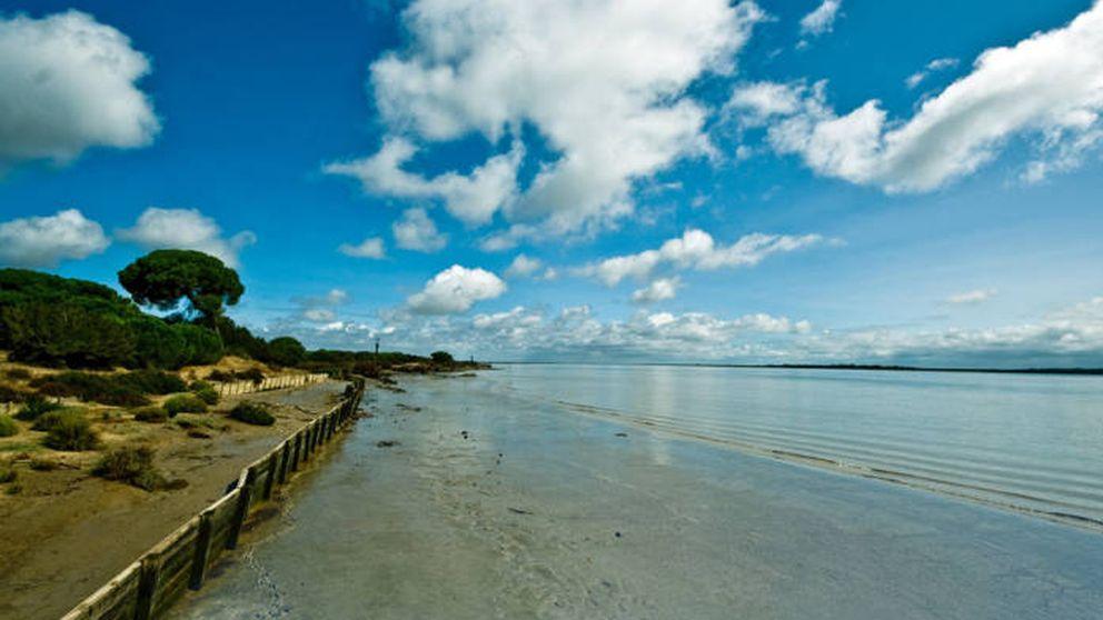 El TS anula el dragado del río Guadalquivir por afectar a Doñana y requerir más justificación