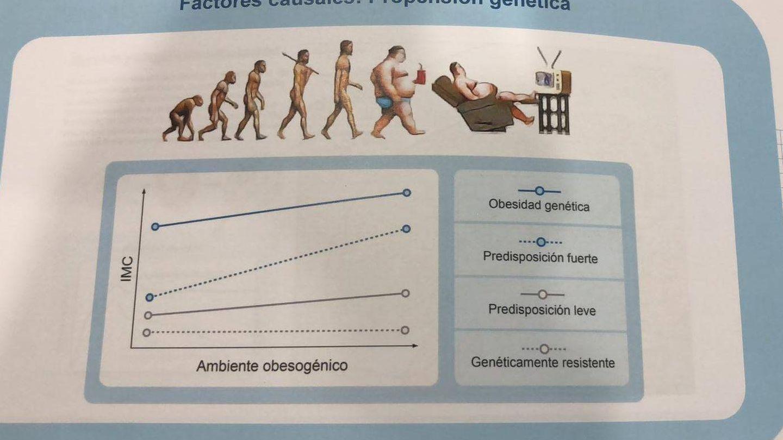 El entorno no influye en las personas resistentes genéticamente a la obesidad.