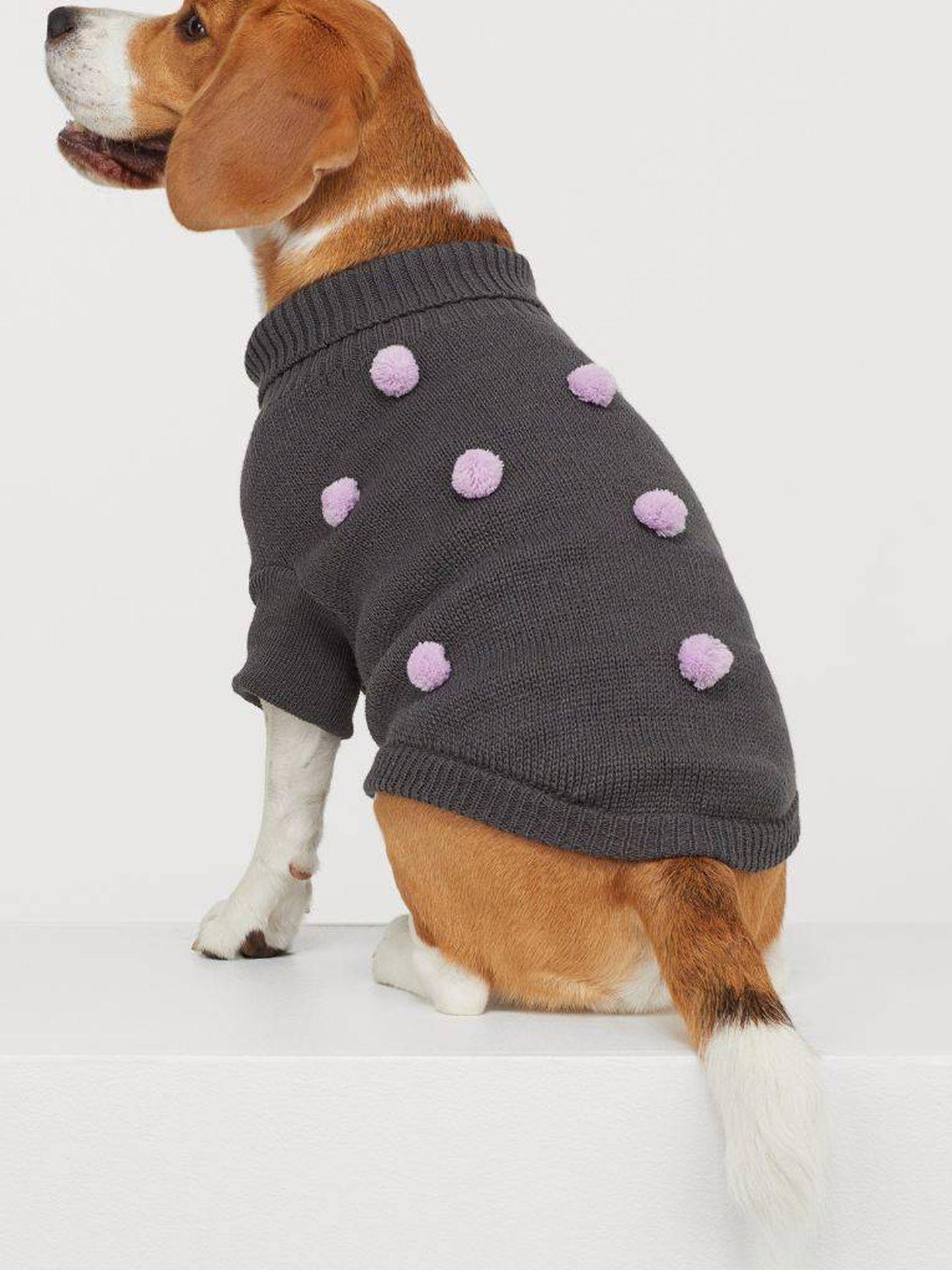 Otro jersey para perros de HyM. (Cortesía)