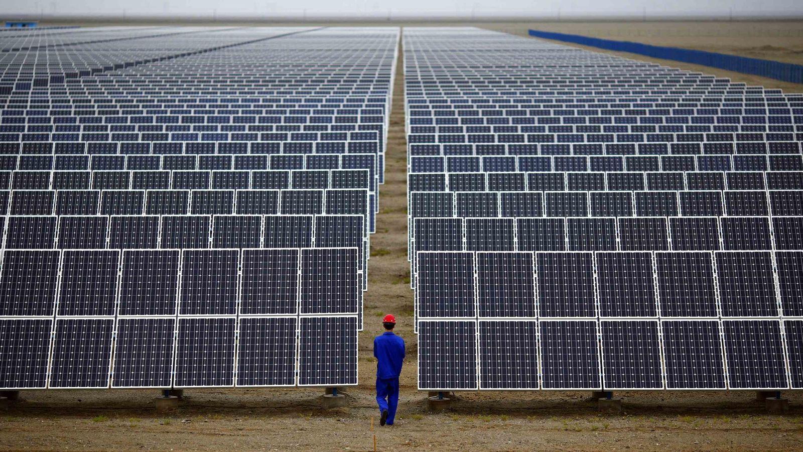 Foto: Foto de archivo de una plnata fotovoltaica. (Reuters)