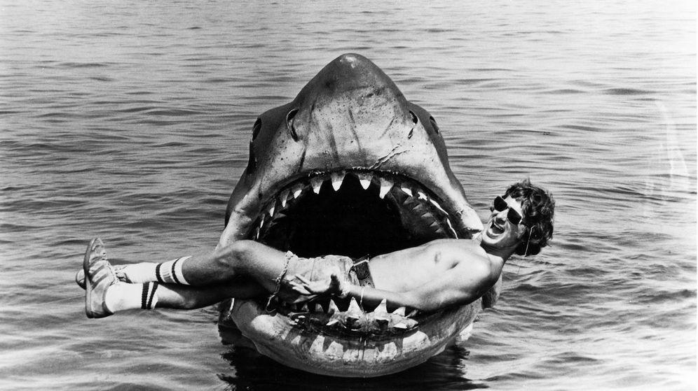 Foto: Los tiburones dan mucho miedo