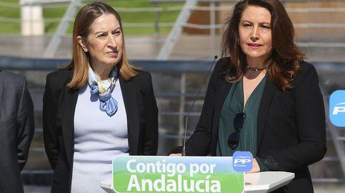 La nº1 del PP por Almería vendió suelo público irregularmente