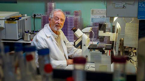 Virus transgénicos para luchar contra el Covid-19: el Gobierno da luz verde al CNB