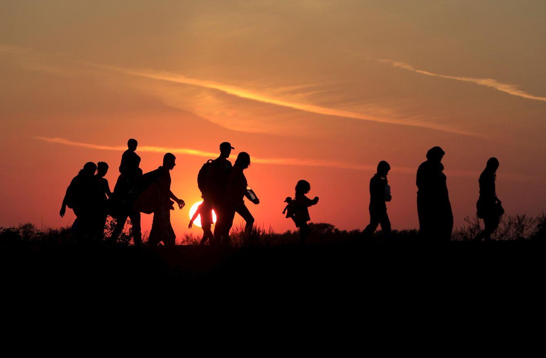 Foto: Refugiados sirios caminan al anochecer hacia la frontera entre Serbia y Hungría, en Roszke, el 30 de agosto de 2015. (Reuters)