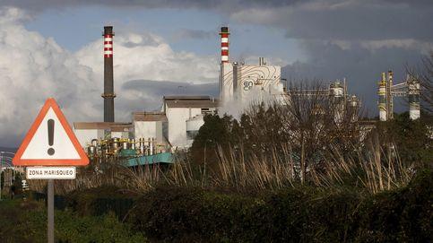 Ence congela las inversiones en Pontevedra y asegura que no hay alternativa a Galicia